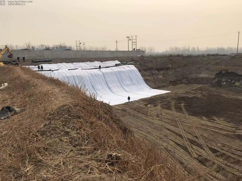 河北污泥坑塘治理项目防水毯,土工膜,土工布施工中