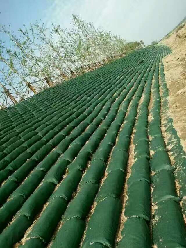 绿化护坡固土采用生态袋性价比高