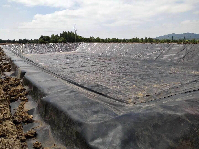 黑龙江虎林市养猪场氧化塘采用1.5mm土工膜做防渗